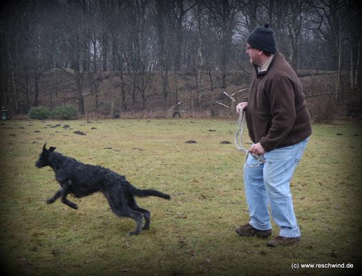 sportlich Herr und Hund