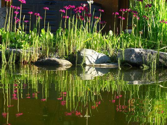 Ufer Impressionen