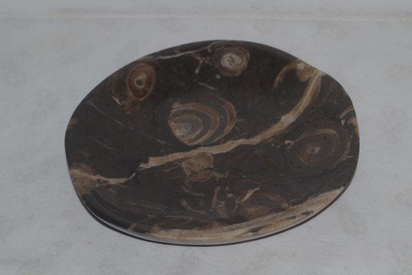 Schale Kalkstein mit Muscheln