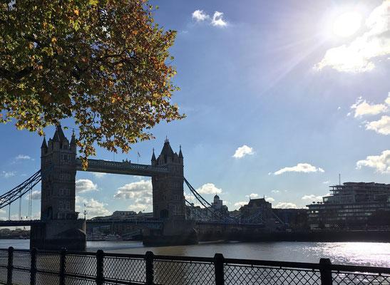100 Dinge, die man in London machen kann - Themse