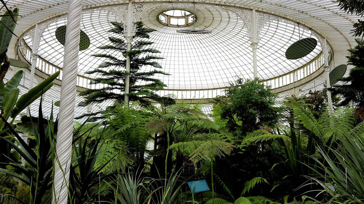 Glasgow - 10 things to see and do - Botanical Gardens