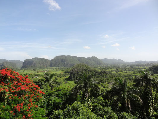 Reiseroute Kuba Mexiko Rundreise und baden - Tagestour Havanna Vinales