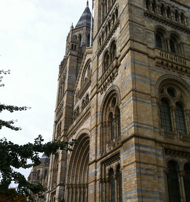 London bei Regen - Natural History Museum