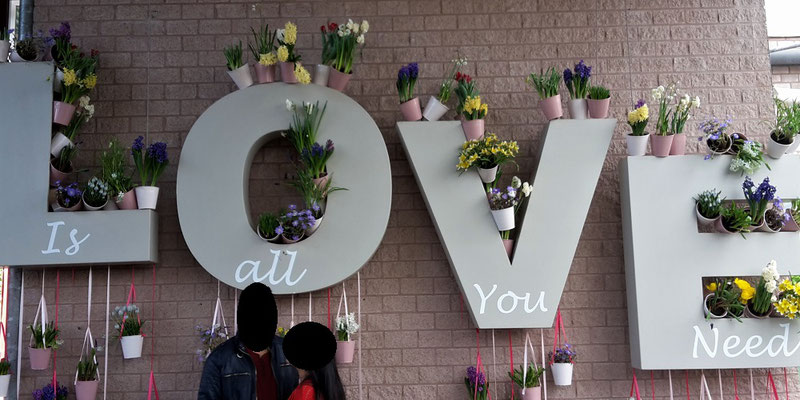 Keukenhof Holland 2018 - Blumenromantik