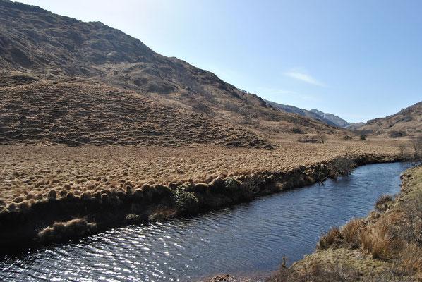 Landschaft  während der Zugfahrt mit dem Harry Potter Zug / Hogwarts Express (Discover Scotland Tours)