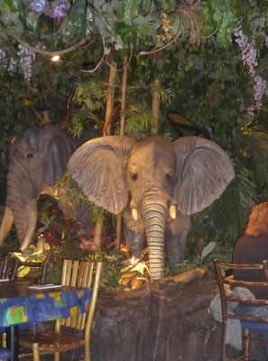 Things to do in London when it rains - Rainforest Café
