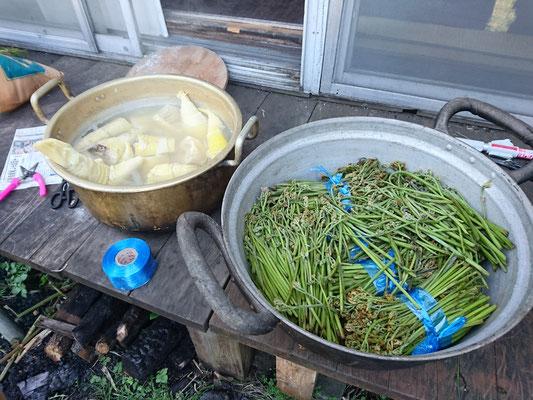 茹でた筍と調理前の蕨