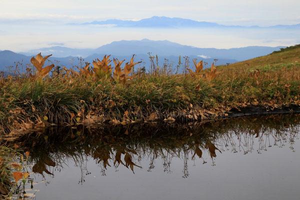 秋色の池塘と白山