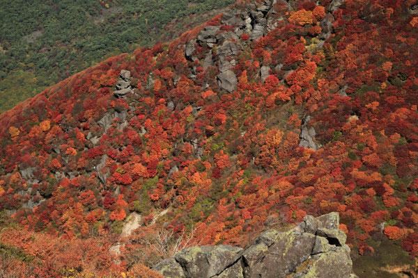 三俣山北峰西斜面