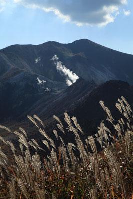 すすきと硫黄山(中央)と星生山(後方)
