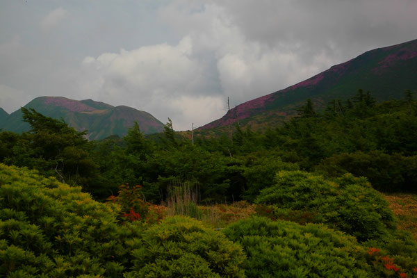 登山道より星生山北斜面(右奥)・三俣山(左奥)を望む