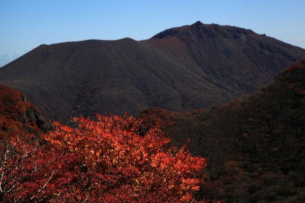 三俣山山頂下より大船山を望む