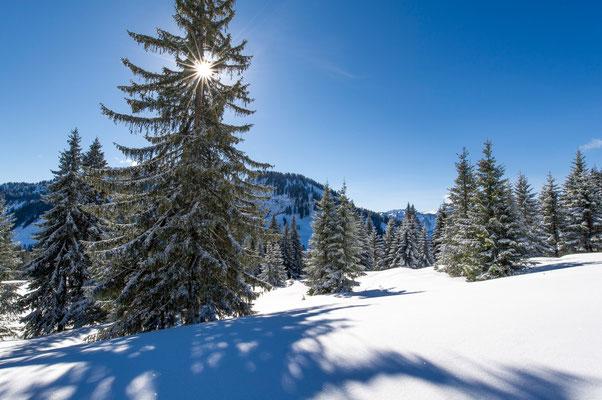 Winterlandschaft am Riedbergpass