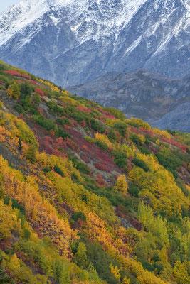 Cougach Mountains
