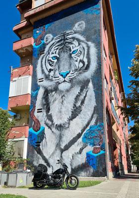 Wandbild in Novi Sad, Serbien