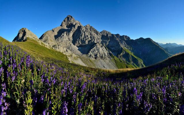 Trettachspitze mit Märchenwiese