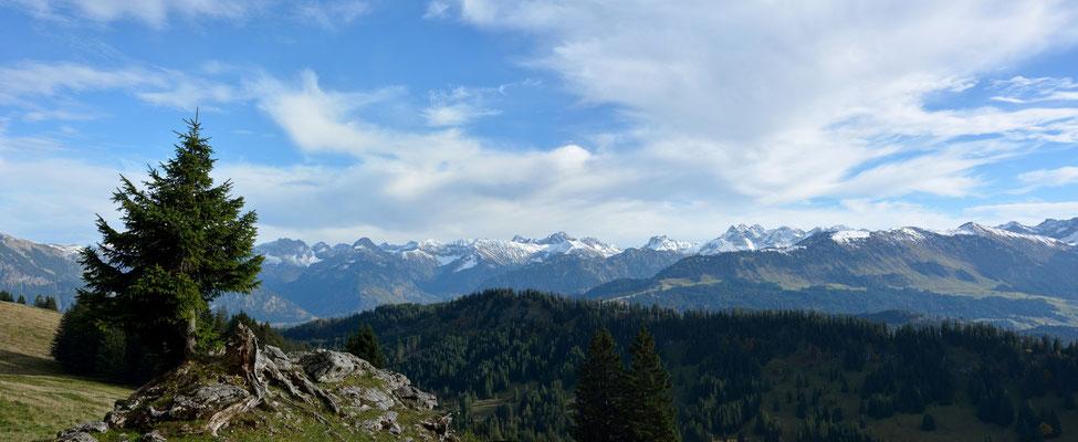 Blick vom Lochbachtal auf die Oberstdorfer Berge