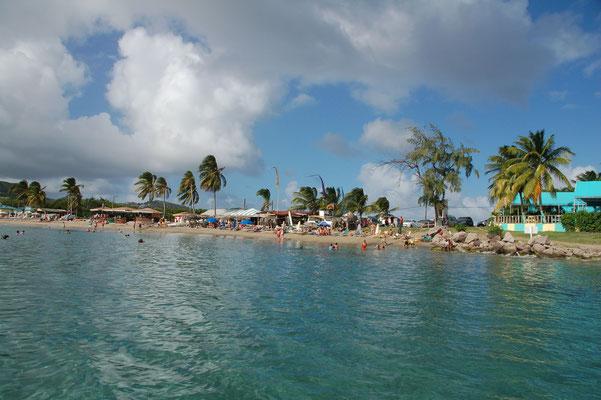 ....in der Frigatte Bay, einer Badebucht, 3sm ausserhalb von Basseterre.