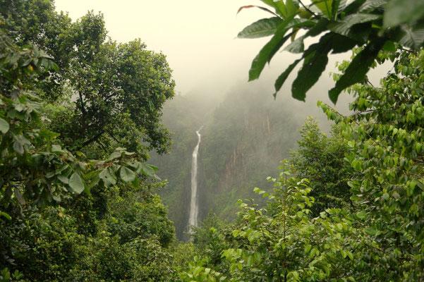 Die grössten Wasserfälle in der gesamten Karibik