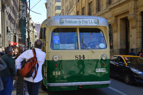 Elektrobusse verkehren in 5-Minuten-Takt