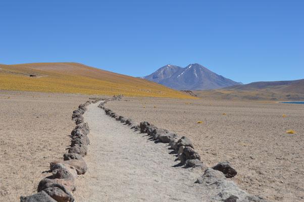 Ein alter INCA TRAIL. Über 3000 Jahre ist diese Strasse der Inca alt.