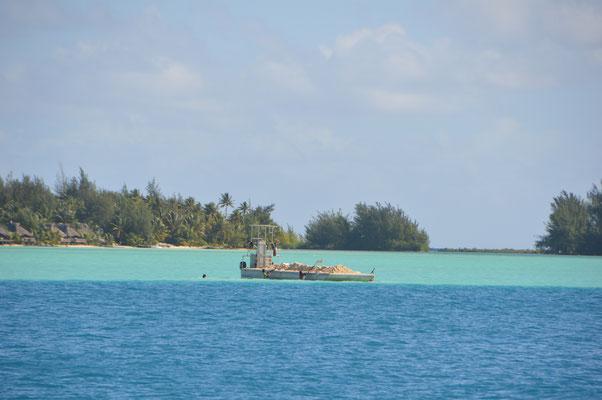 Feiner, heller Sand wird hier von tüchtigen Arbeitern aus der Lagune geschaufelt