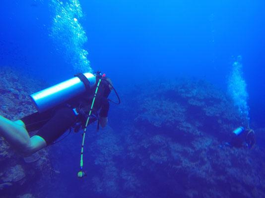 Auf dem Weg zu einer Höhle in ca.25m Tiefe... (Rest leider unscharf)