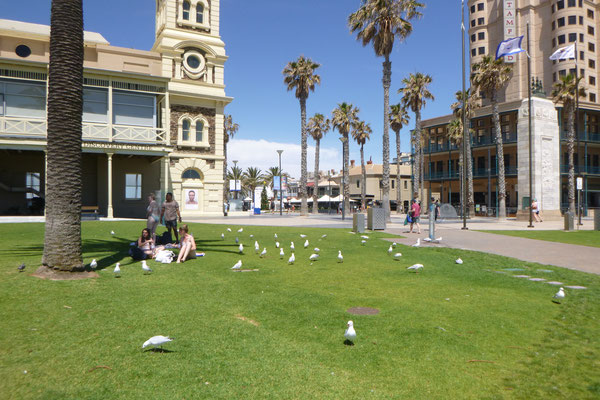 IN GLENELG