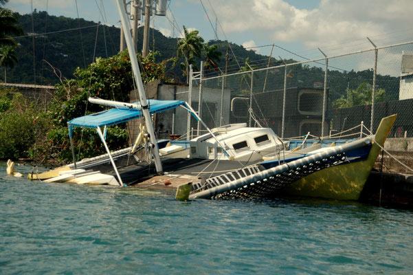 Endstation Port Antonio - Ein Trauerspiel