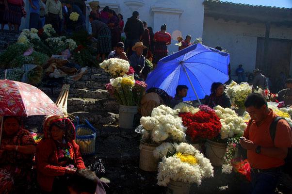 Vor der Kirche gibt es Blumen in allen Farben und Varianten.