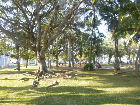 Park Place Tual, mitten in Noumea