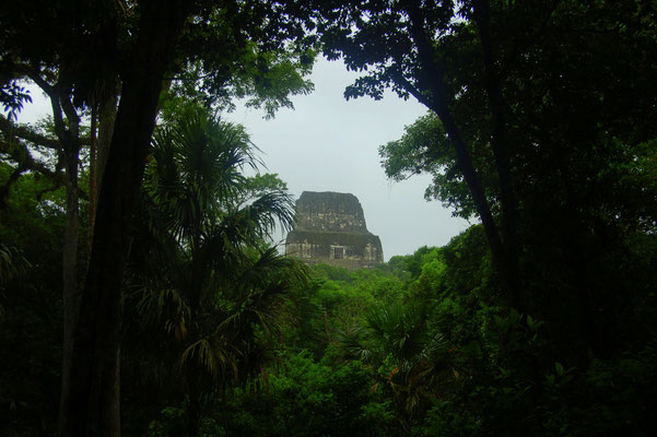 Es gibt nur wenige Plätze von wo man einen freien Blick auf die Pyramiden hat.