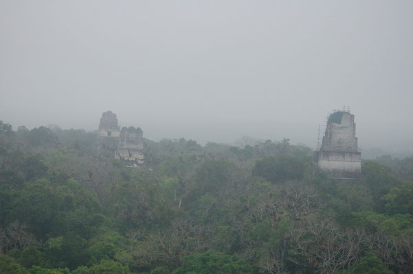 """Nebelaufgang"" über Tikal"