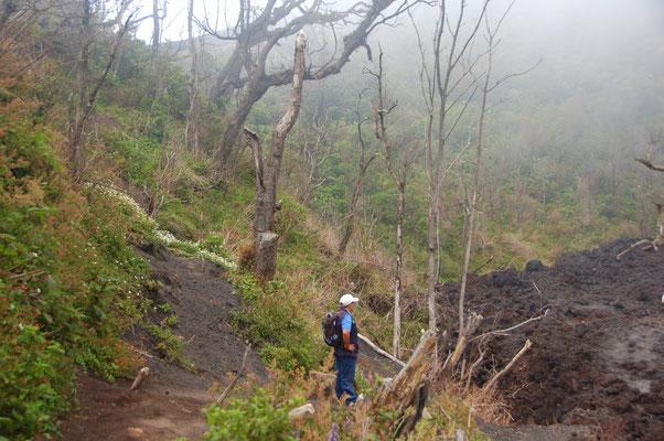 Am Rand eines Lavafeldes