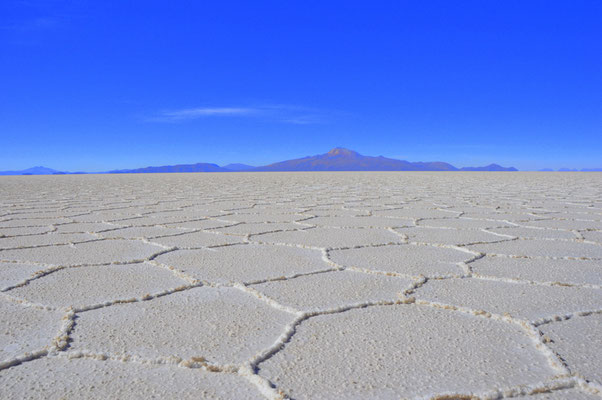 Brüchige Salzkruste. In den Rissen sickert Wasser von unten nach oben