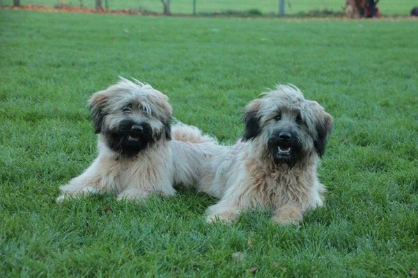 Otti und Lotti mit 10 Monaten
