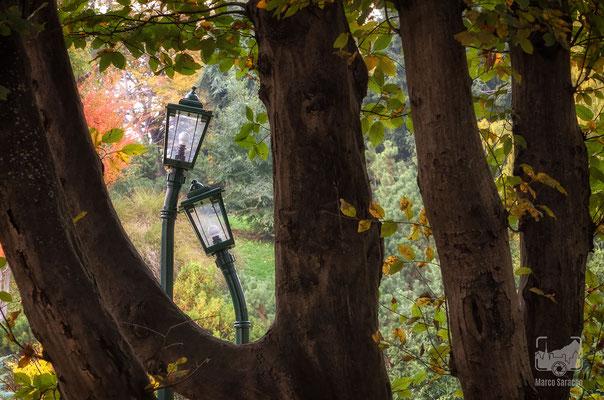 02 - I lampioni innamorati al Parco del Valentino