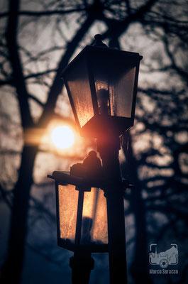 08 - I lampioni innamorati all'alba
