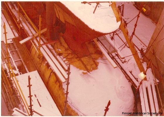 Le bulbe sous la neige