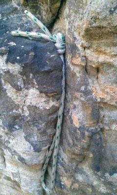 Riss-Schlinge aus Dynema