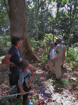 観察会の参加者(観察の森)