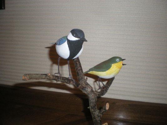 (左)シジュウカラ(右)メジロ