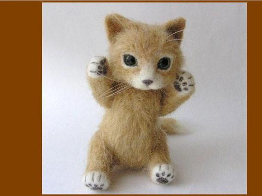 羊毛猫テディー