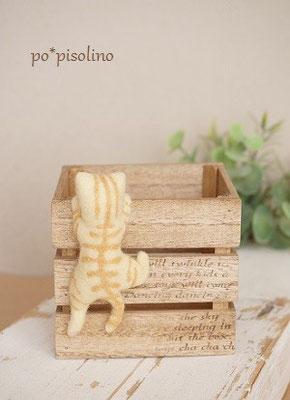 BOX = 8×6.5cm 猫を含む高さ = 8.7㎝
