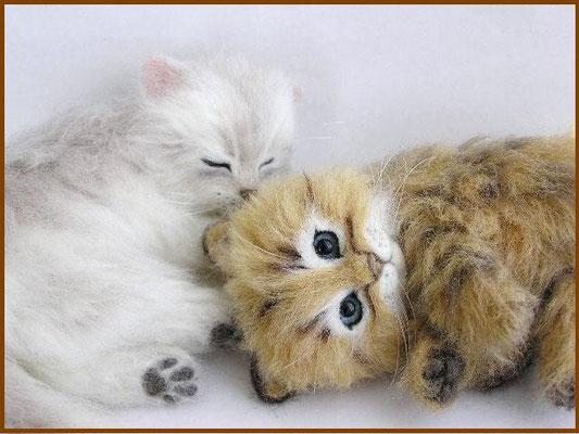 羊毛フェルト猫 チンチラシルバー&チンチラゴールデン