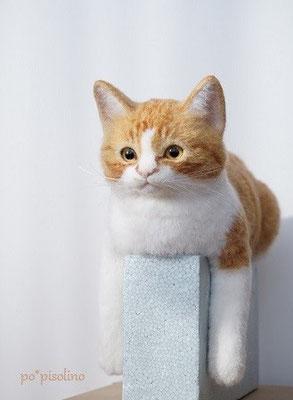 オーダーメイド*羊毛フェルトの猫*くま君