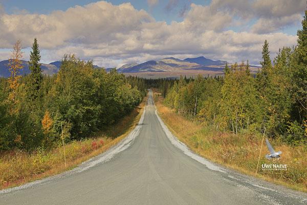 Schwedisch Lappland 6439
