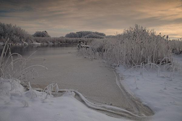 Winter an der Alten Sorge bei Fuenfmuehlen 0127