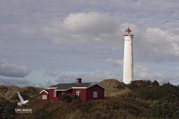 Leuchtturm Noerre Lyngvig Holmsland Klit Daenemark,Lighthouse Holmsland Klit Danmark 0010