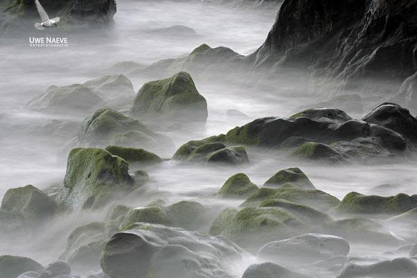 Steine im Meer 6864